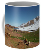 Sheep In The Atlas Mountains 02 Coffee Mug