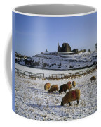Sheep On A Snow Covered Landscape In Coffee Mug