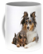 Sheepdog With Puppy Coffee Mug