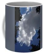 Shelby Township Coffee Mug