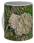 Shelf Fungus - Grifola Frondosa Coffee Mug