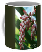 Shell Ginger Alpinia Zerumbet Tropical Flowers Of Hawaii Coffee Mug