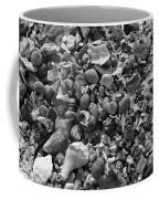 Shells Iv Coffee Mug