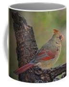 Shes An Early Bird  New Version Coffee Mug