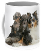 Shetland Sheepdog With Puppies Coffee Mug