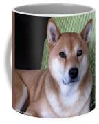 Shiba Inu Kobi-3 Coffee Mug