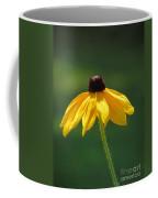 Shiner Coffee Mug