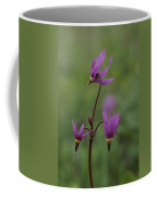 Shooting Star Wildflowers, Close View Coffee Mug by Norbert Rosing