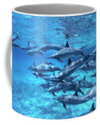 Short-beaked Common Dolphin Delphinus Coffee Mug by Hans Leijnse