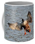 Shoveler Landing Coffee Mug