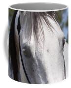 Show Horse At Mule Days Coffee Mug