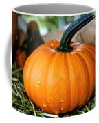 Shower Fresh Coffee Mug