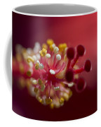Showy Tropical Vibrant Red Hibiscus Pistil Coffee Mug
