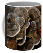 Shrooms Abstracted Coffee Mug