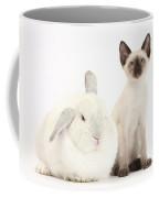 Siamese Kitten And White Rabbit Coffee Mug