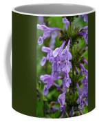 Siberian Catmint Coffee Mug