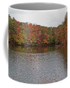 Sibley Pond Coffee Mug