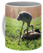 Sibling Rivalry Coffee Mug