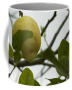 Sicilian's Lemonade Coffee Mug