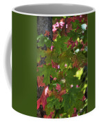 Signs Of Autumn  Coffee Mug