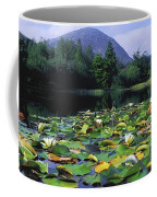 Silent Valley, Mourne Mountains Coffee Mug
