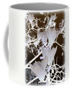 Silhouetted Blossoms Coffee Mug