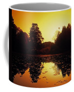 Silhouetted Home And Trees Near Water Coffee Mug