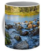 Silk Water Coffee Mug