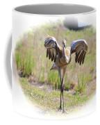 Silly Sandhill Crane Chick Coffee Mug