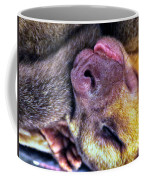 Silly Sleep Coffee Mug