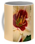 Siloam Shocker Coffee Mug