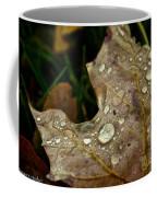 Silver Maple Rain Coffee Mug
