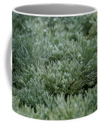 Silver Mound Dew Drenched Coffee Mug