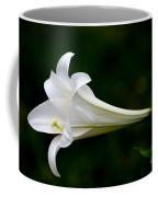 Simplicity Coffee Mug