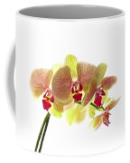 Simplified Orchids I Coffee Mug