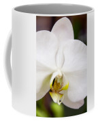 Simply Pure Orchid Coffee Mug