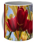 Single Late Red Georgette Coffee Mug