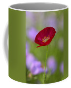 Single Red Poppy  Coffee Mug