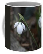 Single Snowdrop Squared 1 Coffee Mug