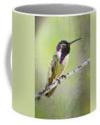 Sittin' Pretty  Coffee Mug