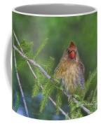 Sitting In The Cedar Coffee Mug