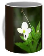 Six Oh Clock Coffee Mug