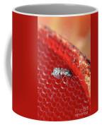 Sixteenth-inch Long Female Biting Midge Coffee Mug