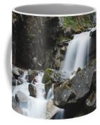 Skagway Waterfall 8619 Coffee Mug