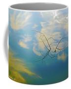 Sky On Water Coffee Mug by Brian Wallace