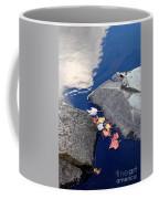 Sky Reflection Leaves And Rocks Coffee Mug