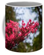 Skylit Blooms Coffee Mug