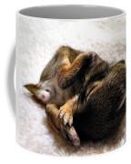 Sleeper Coffee Mug