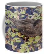 Sleeping Duck Coffee Mug