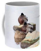 Sleeping Mallards Coffee Mug